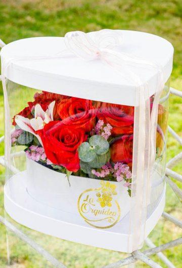 Flores-17-1